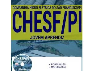 Apostila Jovem Aprendiz do Processo Seletivo da CHESF / PI – 2017